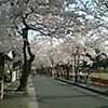 PIC_0061