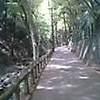 PIC_0066