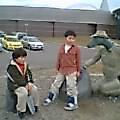 福井県立恐竜博物館に寄りました